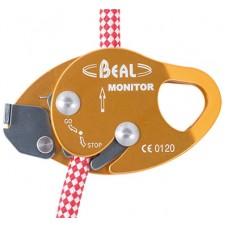 Monitor Beal